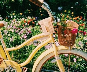 aesthetic, flowers, and bike image