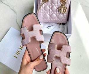 dior and hermes image