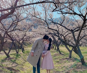 beautiful, ulzzang, and perfect couple image