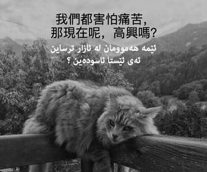 china, quote, and kurd image