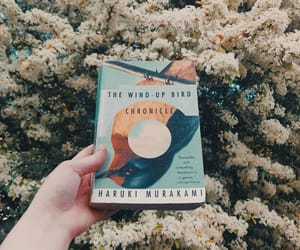 "Ula 🍂 on Instagram: ""Just finished The Wind-Up Bird Chronicle! ⭐⭐⭐⭐⭐ • This story would have fallen apart in less masterful hands. Showcasing Murakami's surreal…"""