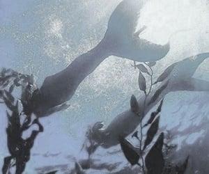 mermaid, aesthetic, and water image