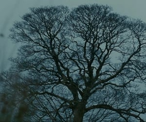 aesthetic, dark, and wuthering heights image