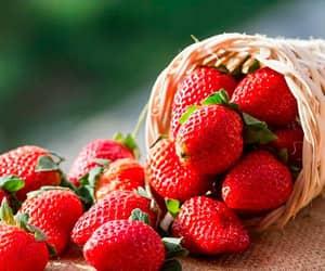 strawberry, frutillas, and frutilla image