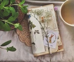 plants, flowers, and tea image