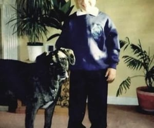 baby harry, baby, and dog image