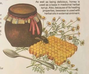 honey, aesthetic, and yellow image