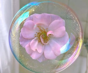 flowers, aesthetic, and bubbles image
