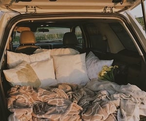 car, cozy, and flowers image