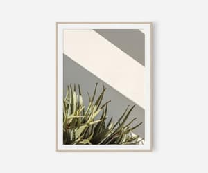 cactus, etsy, and photography image
