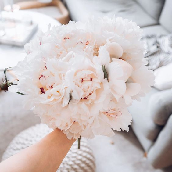 aesthetic, flowers, and bloom image