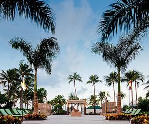 aruba, travel destination, and Caribbean image