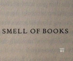 aesthetics, quotes, and books image