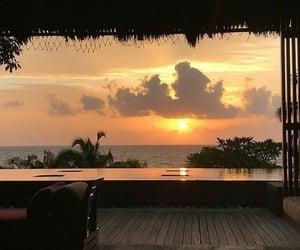 Tropics vibes