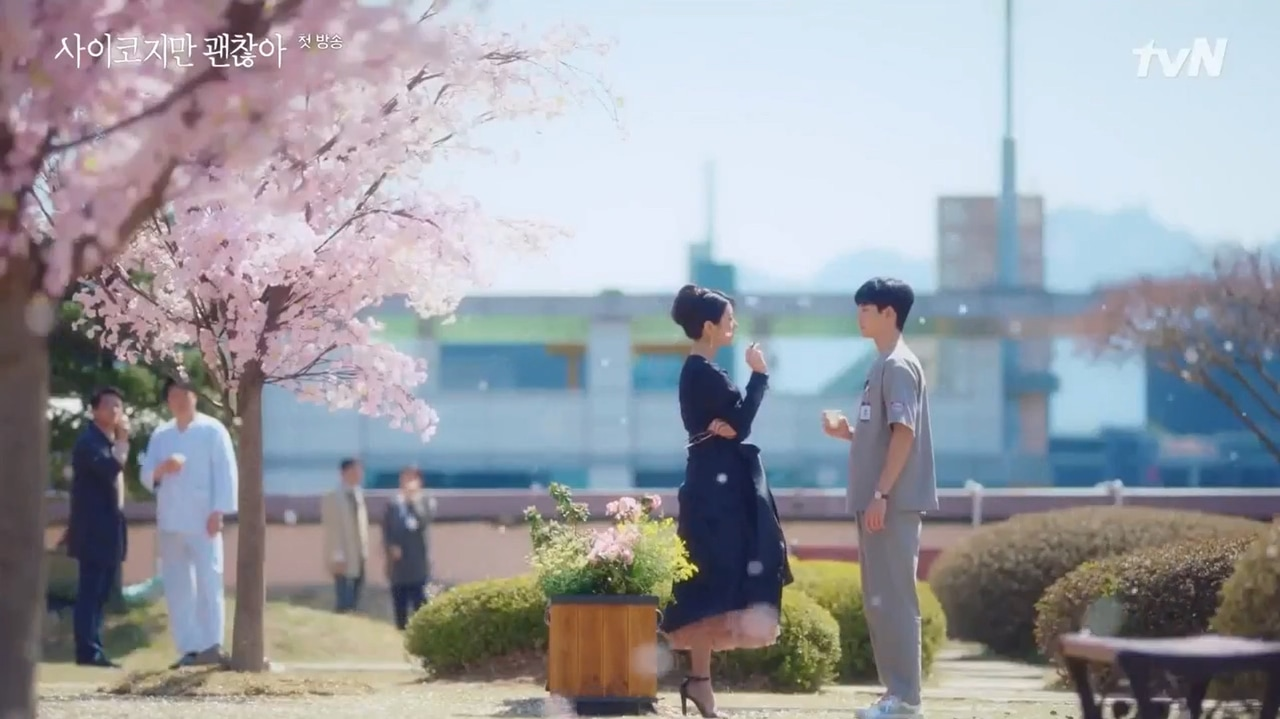 aesthetic, captions, and cherry blossom image