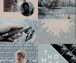aesthetic, series, and the maze runner image