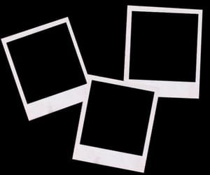 black, photographs, and blank image