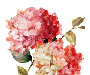 editing, flowers, and png image