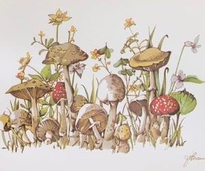 art, drawing, and mushrooms image