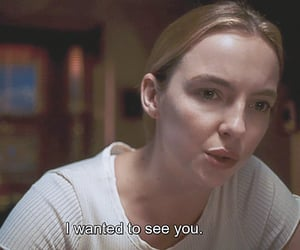 captions, series, and villanelle image