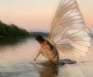fairy, aesthetic, and wings image