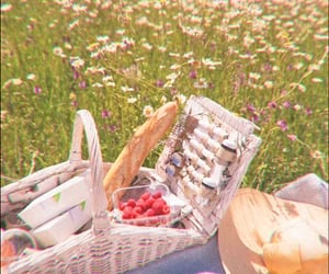 aesthetic, basket, and enchanted image