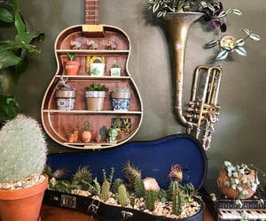 cactus, guitar, and plant image
