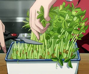 food, gif, and anime food image