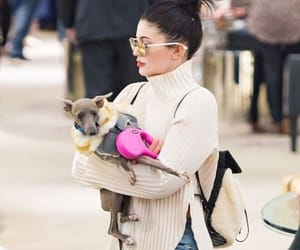 dog, kendall jenner, and kylie jenner image