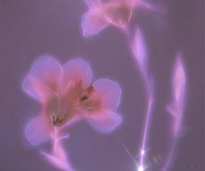 edit, flowers, and purple image