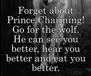black and white, prince charming, and love image