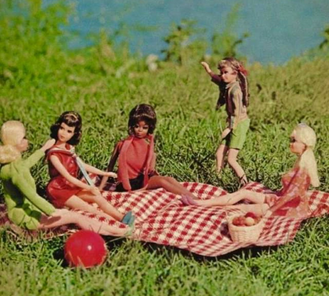 60s, barbie, and picknick image
