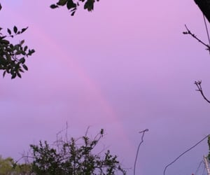 blue, pink, and rainbow image