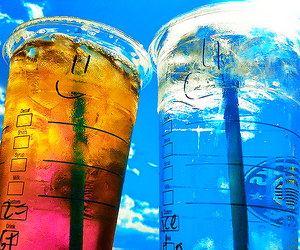 starbucks, summer, and drink image