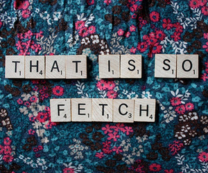 fetch, mean girls, and quotes image
