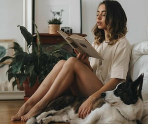 books, comfy, and relax image