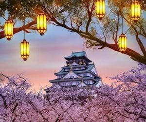 castle, japan, and osaka image