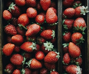 strawberry, summer, and berries image