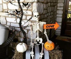 decor, Halloween, and diyhalloweendecorideas image
