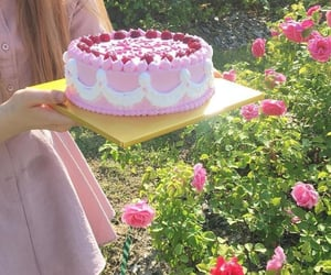cake, garden, and pink image