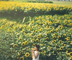 flower, instagram, and girl image