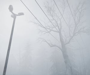 blizzard, fog, and lost image
