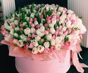 bouquet, color, and fleur image