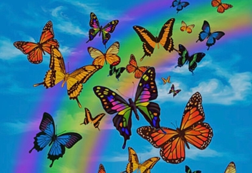 aesthetic, butterflies, and L image