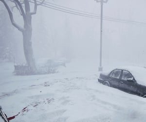 blizzard, car, and cold image