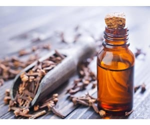 essential oils and clove oil image