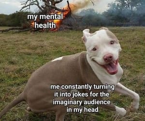 dark memes #memes