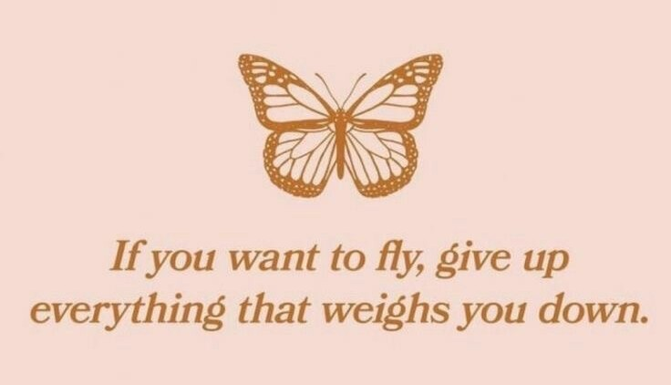 butterfly, future, and goals image