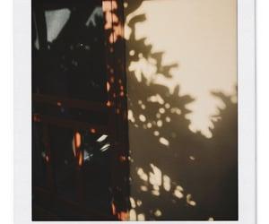 aesthetic, door, and film image