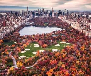 🍂Central Park più bello che mai.❤🍁 #autumn #fall #mountain #amolautunno #autumngirl #nature #naturelovers #love #montagne #colours #orange #fallinlove #picoftheday #goodmorning #awesome #amazing #photography #photovibes #life #vscofilter #iloveit #naturep
